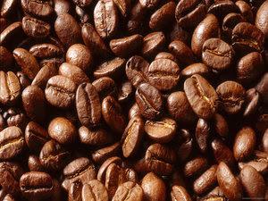 5 Tips Memilih Kopi yang Memiliki Kualitas Baik, yamada kopi