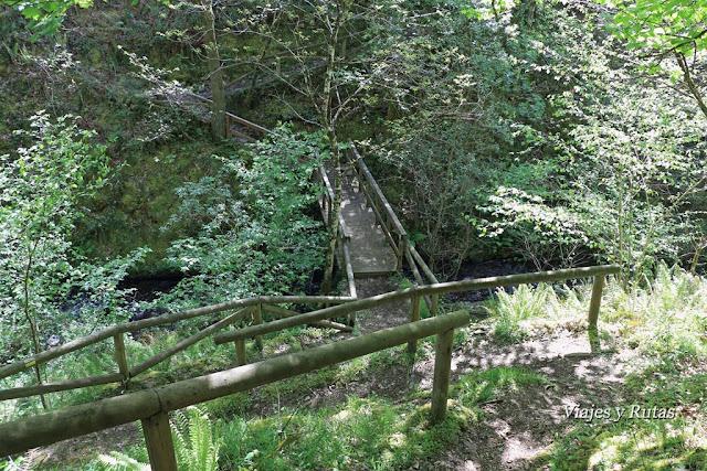 Camino para Os Teixois, Ruta del Agua, Taramundi