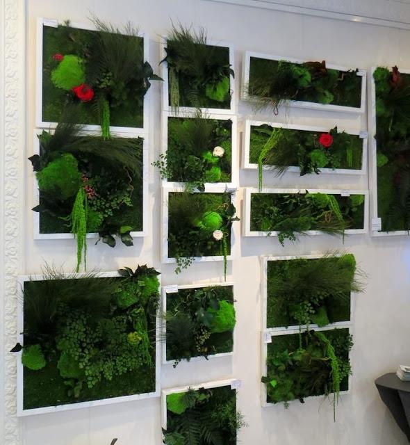 le club d co 39 zeuses d 39 art de belles plantes sans terre ni eau. Black Bedroom Furniture Sets. Home Design Ideas