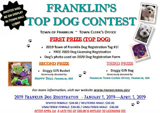 Register your dog, enter the Top Dog Contest!