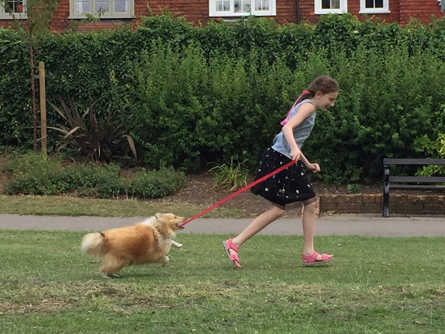 Sasha taking dog for a run