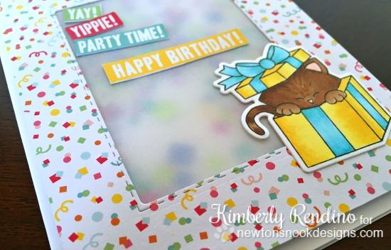 newton's nook designs | confetti | shaker card | birthday | birthday card | handmade card | kimpletekreativity.blogspot.com | papercraft | cardmaking