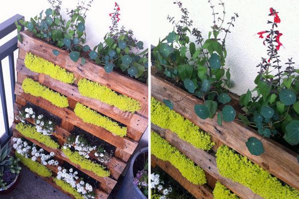 Jardines verticales caseros y reciclados for Como hacer un jardin vertical con palets