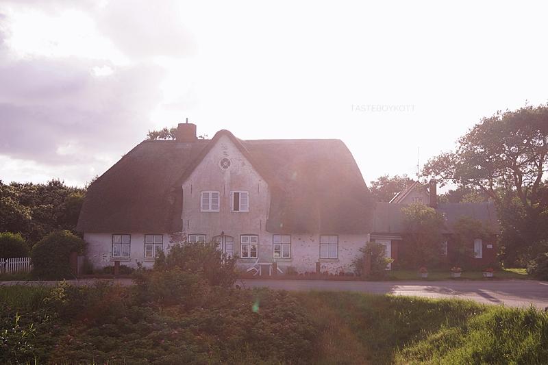 Amrum Wittdün Deich Reetdachhaus Sonnenuntergang Gegenlicht Sommerabend