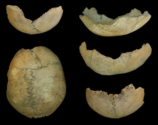 Evidence of cannibalism found in Neolithic Spain