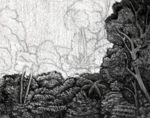 Cara Mudah Menggambar Hutan Lebat Berpenghujan Belajar Menggambar