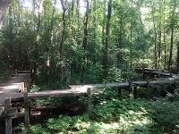 Parc-nature du Bois-de-Liesse passerelles japonaises