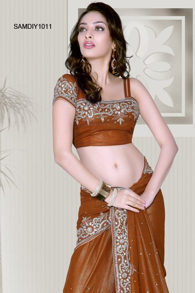 sexy-indian-choli-girl-porn-pix