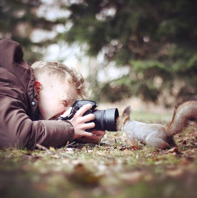 wildlife photography feeding animals konsta  punkka-15