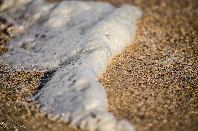 Морска-пяна-Sea-foam