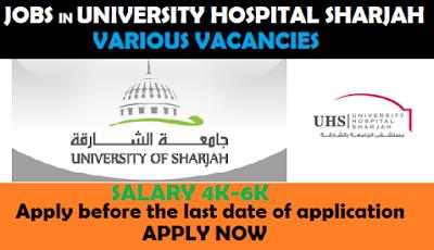 teaching jobs in Dubai, jobs in Dubai, finance jobs in Dubai, banking jobs in Dubai, Career in Dubai, Career in Gulf