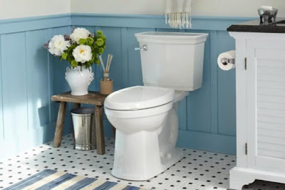 Cleanliness: Six Ways To Make Your Toilet A Safe Place