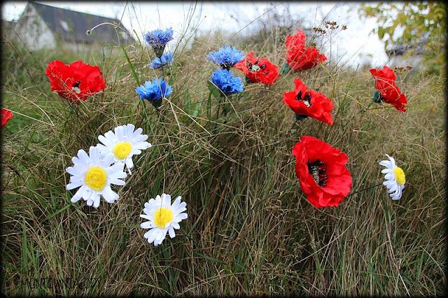 """Maki, chabry i rumianki – czyli """"domowe"""" polne kwiaty ;)"""