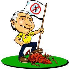 كيفية القضاء على حشرات المنازل بجدة
