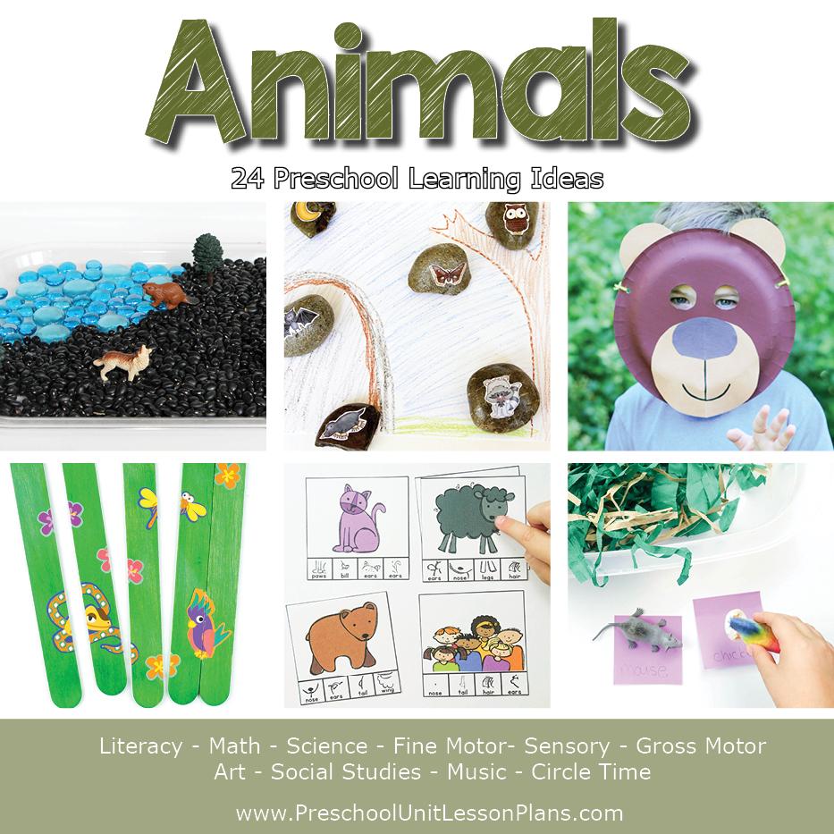 Animals Preschool Unit Lesson Plans