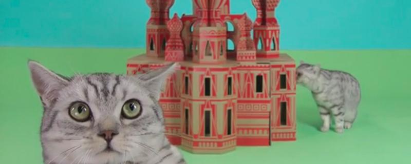 Cajas de cartón monumentales para gatos
