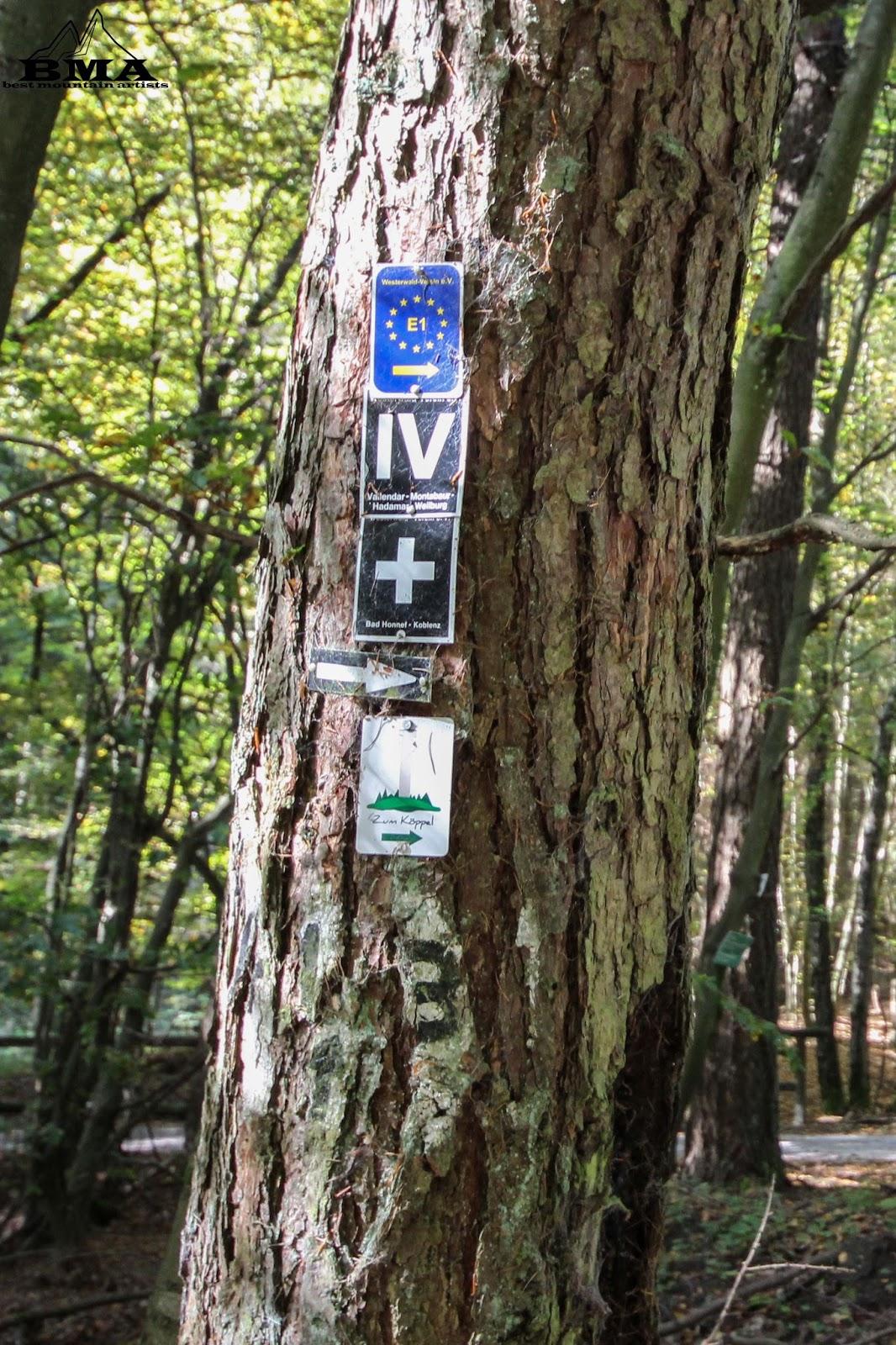 wandern rheinland-pfalz - wanderung montabaur - köppel - outdoor blog best mountain artists