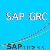 [Apps] SAP_GRC Tutorial