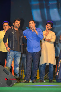 Nenu Local Audio Launch Stills  0009.JPG