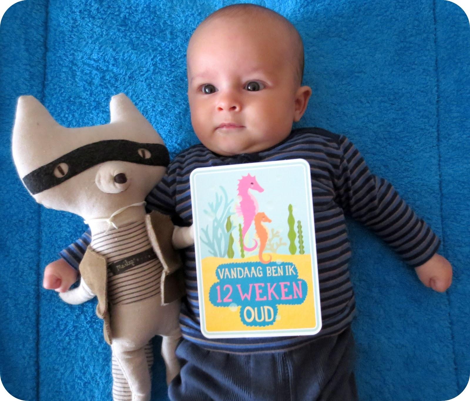 Baby Rug Naar Buik Draaien: Tiene: Milestone Baby Card : 12 Weken