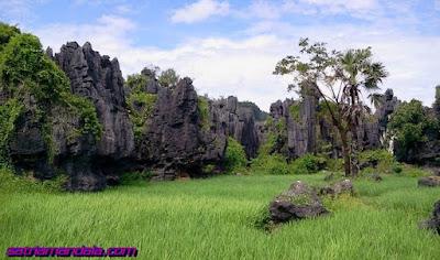 Surga Indonesia Rammang - Rammang Maros