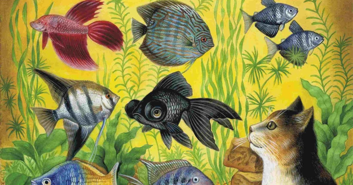 Открытки аквариумные рыбки