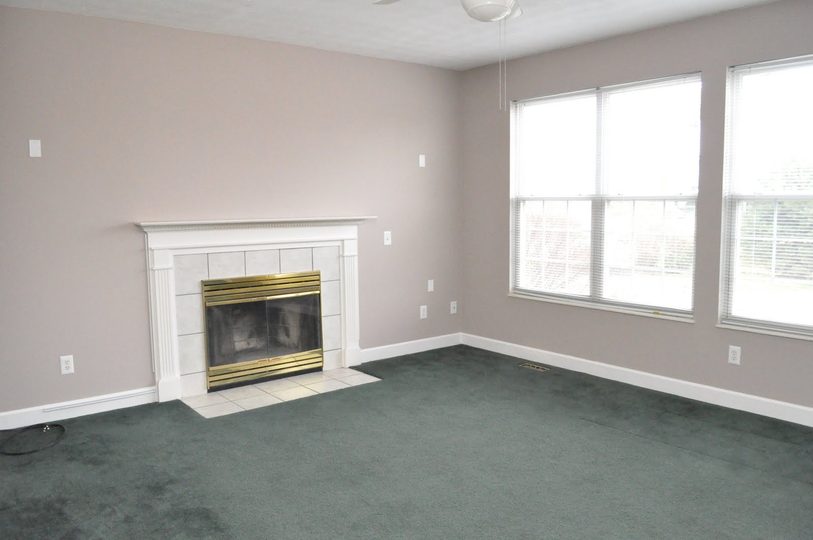 What Paint Colors Go With Forest Green Carpet - Carpet ...