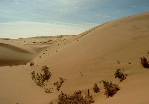 Gobi Çölü Nerede? Hakkında Kısa Bilgi