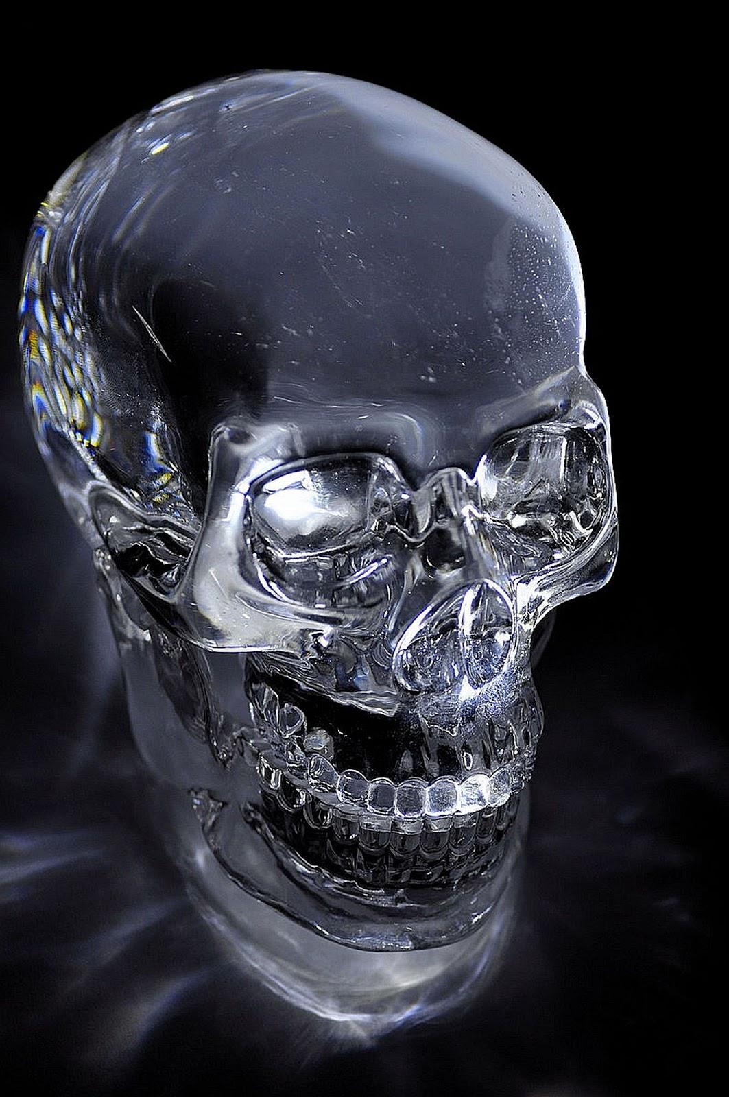 Kristallschädel Kaufen