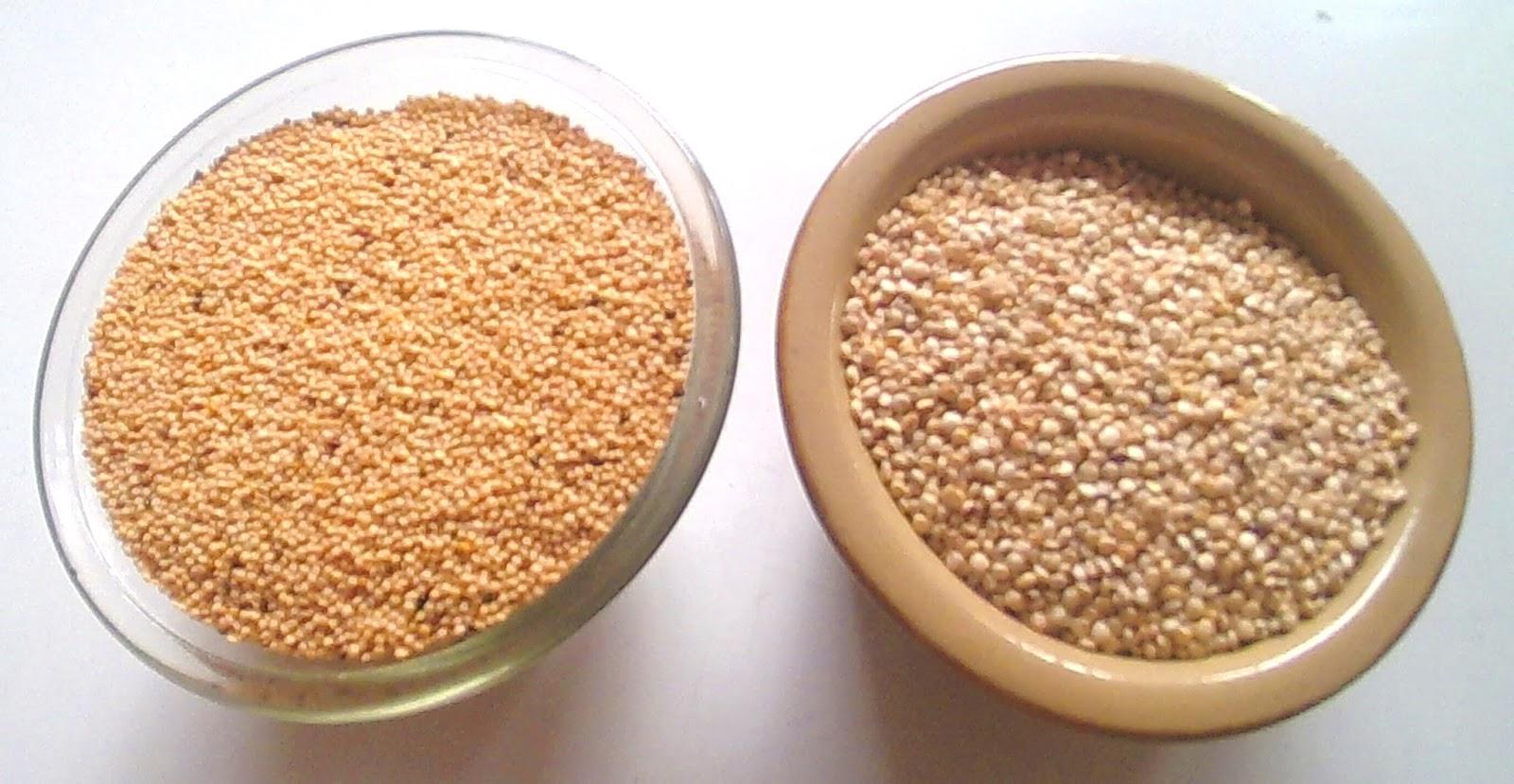 C mo cocinar amaranto y quinua proporciones de agua for Cocinar 1 taza de quinoa