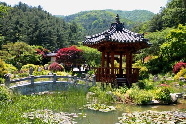 Vita in Vitro: The Garden of Morning Calm - the Most ...