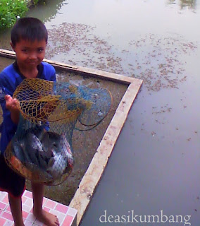 Harga Tiket Masuk Dan Paket Delta Fishing Sidoarjo