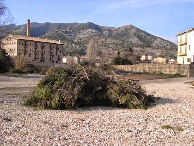Sant Antoni 2009 fotos de Lluis Belsa 2