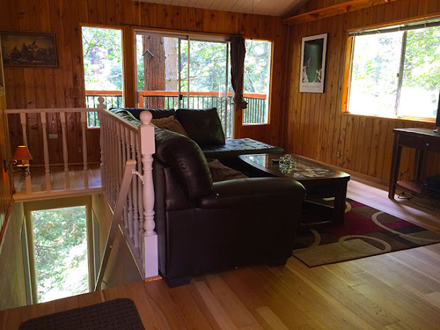 cabin in the woods, forest bathing, lake arrowhead, arrowhead villas, real estate, california