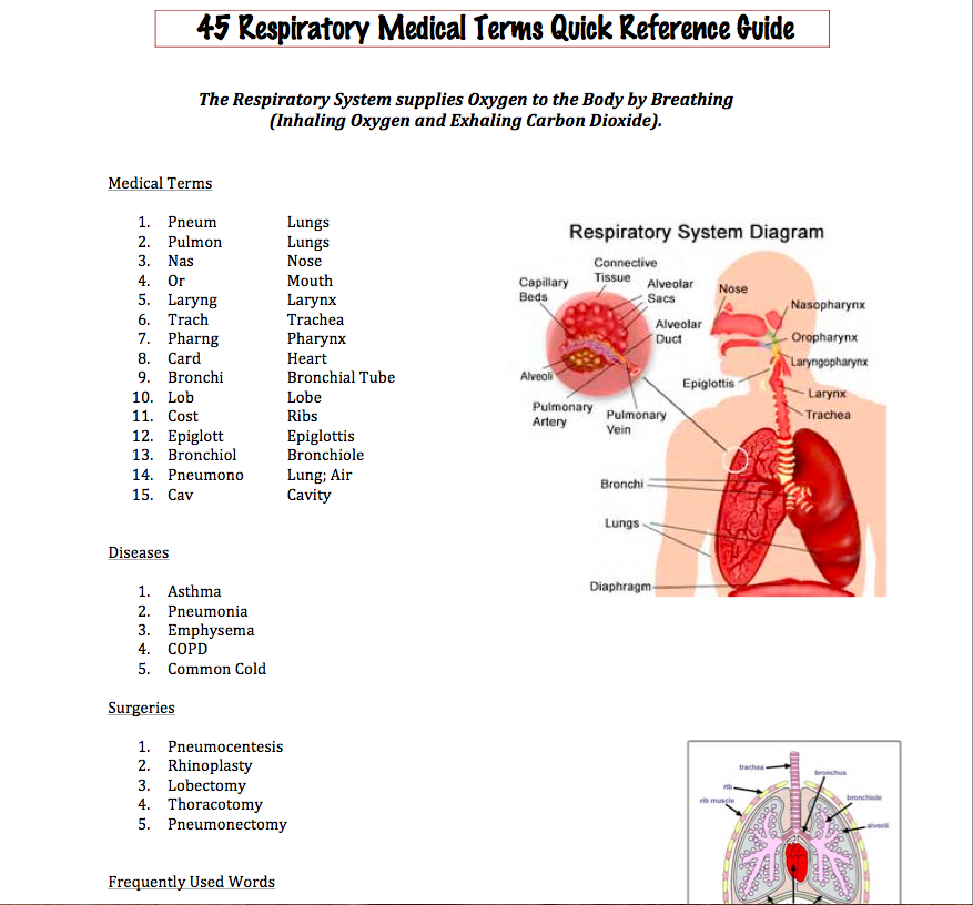 Easy Medical Terminology : New Respiratory Medical