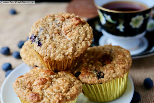 Blueberry Banana Muffins with Steel Cut Oats