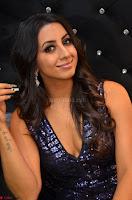 Sanjana looks happy in sparkling short Deep neck Purple Gown ~  Exclusive 82.JPG
