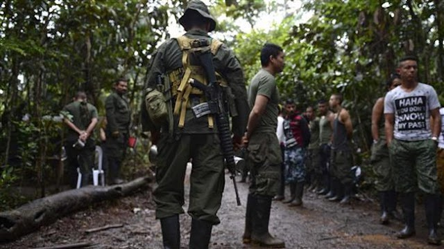 Two rebels with FARC killed in Colombia
