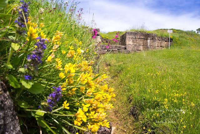 Blidaru Fortress - Ruins