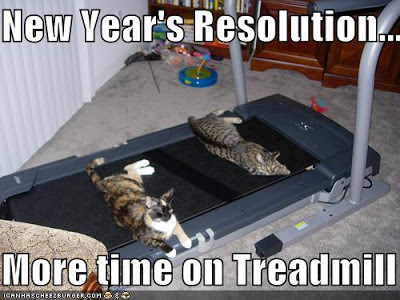 New Year Resolution Cat Memes 2017