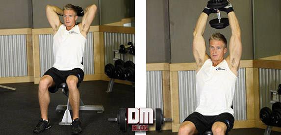 treino de biceps e triceps