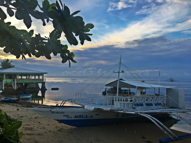 Ocean Bay Beach Resort and Scuba Crew Dive Shop - Dalaguete, Cebu