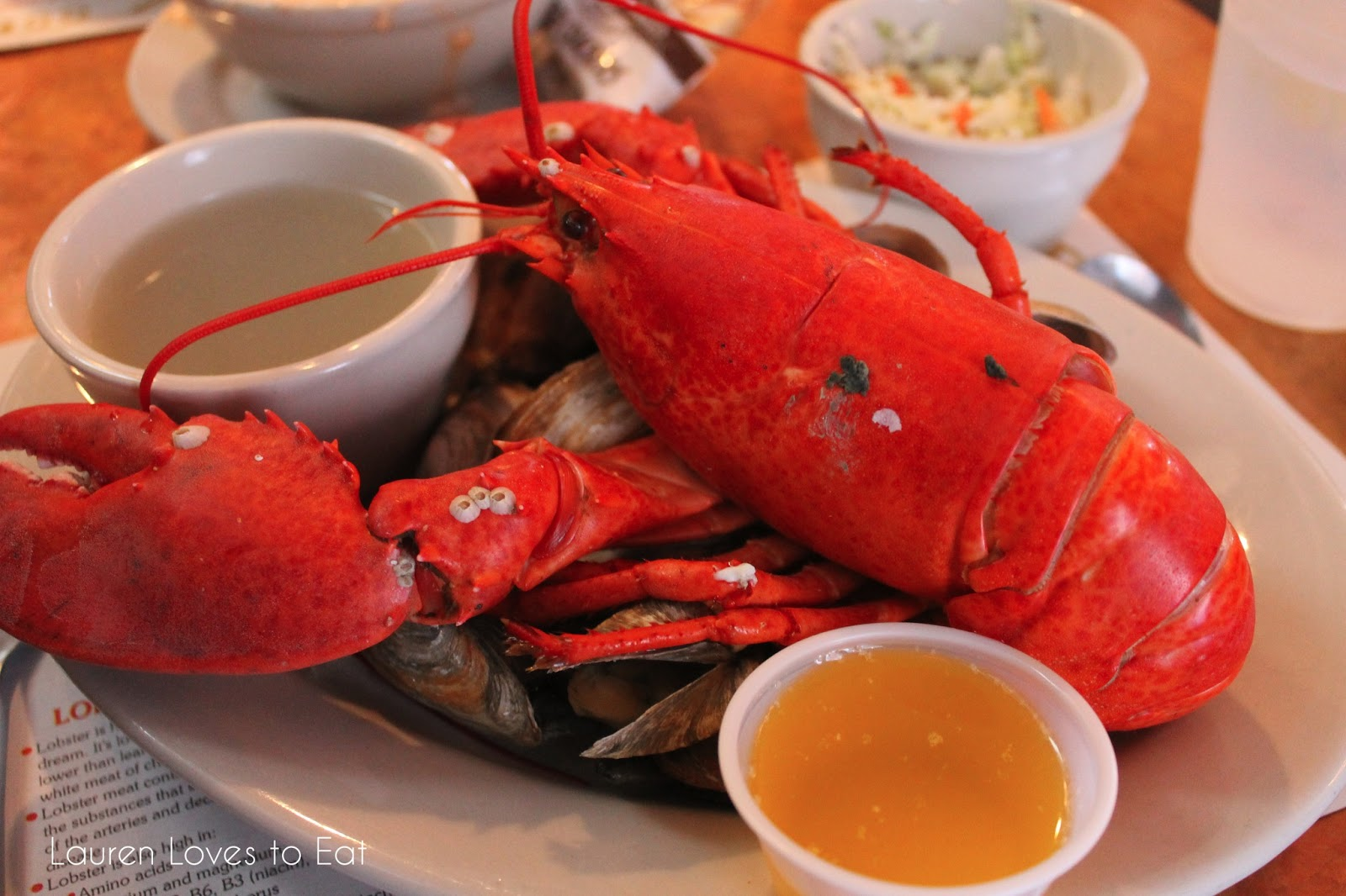 Lauren Loves to Eat: Portland, Maine: Best Lobster at J's