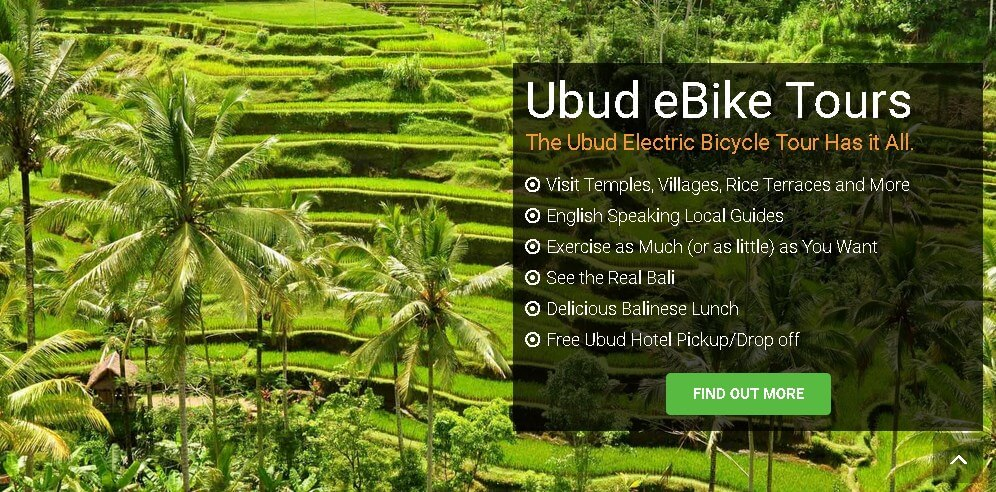 eBikesBali cycling tour ubud