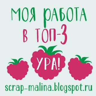 Топ Блога Scrap-Malina