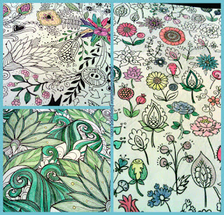A collage of unfinished coloring pages.