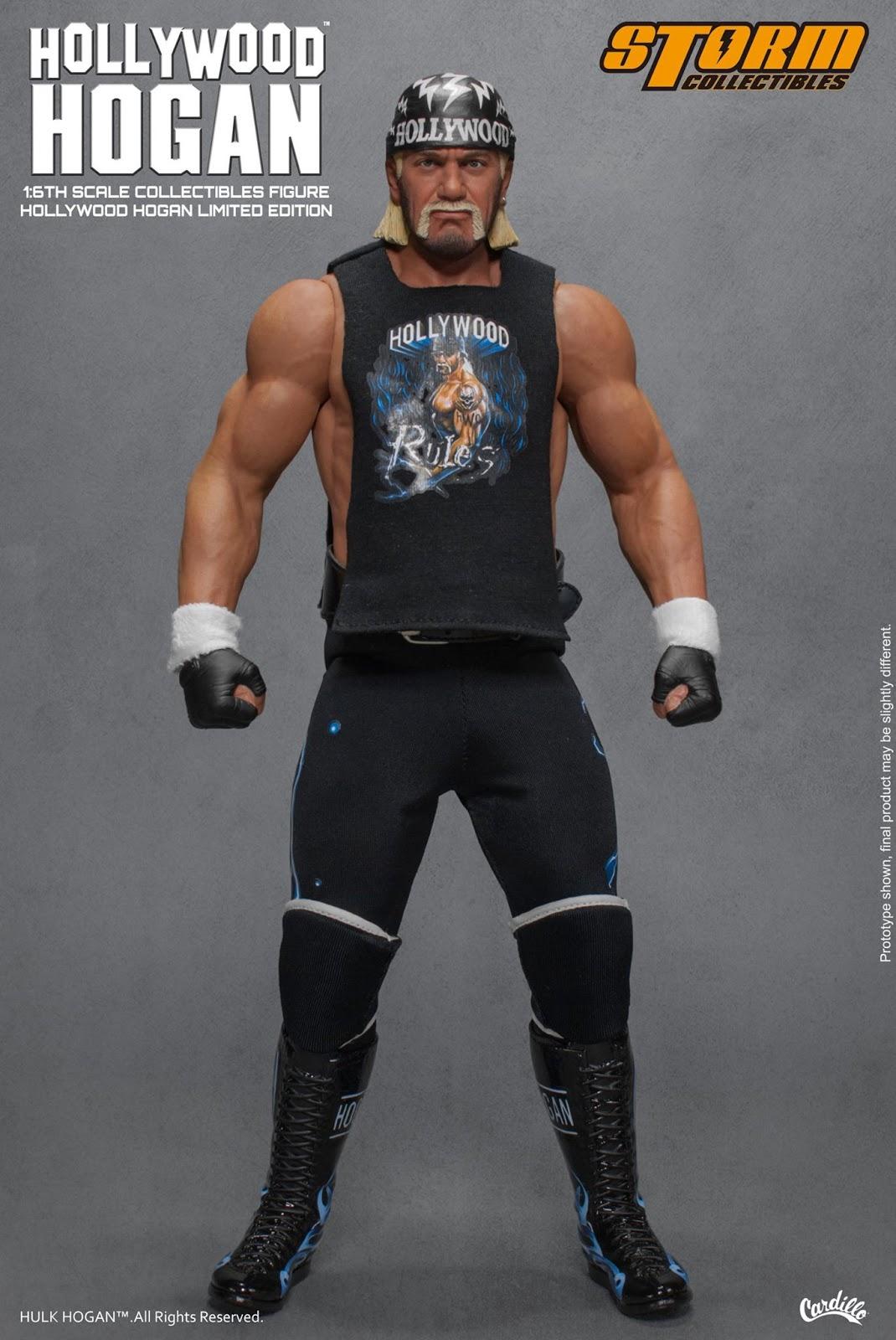 Hulk hogan recent-2167