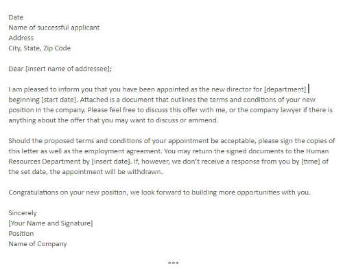 Director Appointment Letter