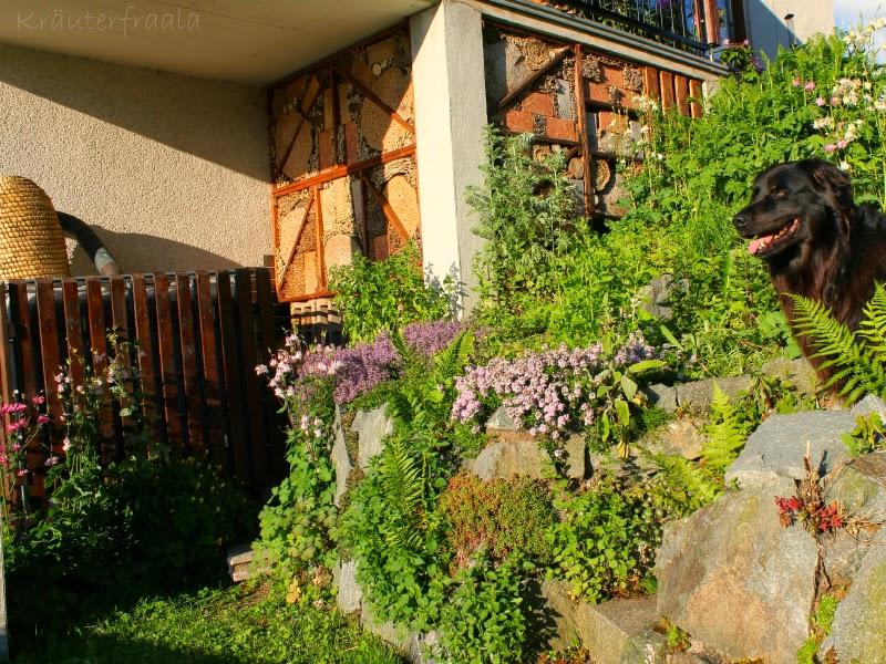 Insektenhotel und Gartenzimmer für andere Tiere