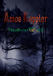 My novel ShadowWalk